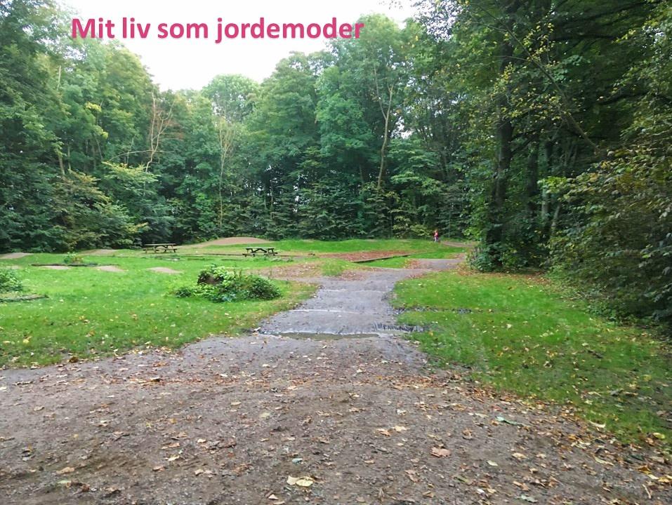skoven jordemoder Stine Roswall