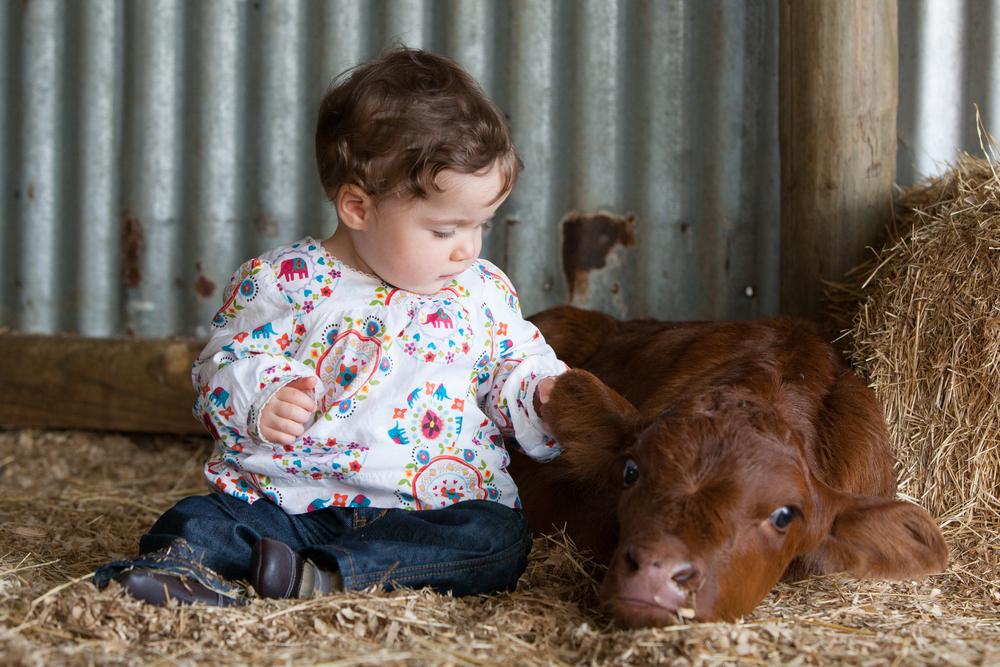 Børn_og_dyr